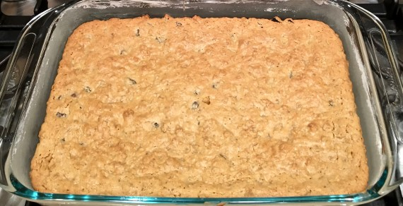 oatmeal brownies finished in pan